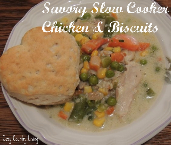 Savory Slow Cooker Chciken & Biscuits