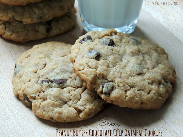 Chewy Peanut Butter Chocolate Chip Oatmeal Cookies Chewy Peanut Butter ...