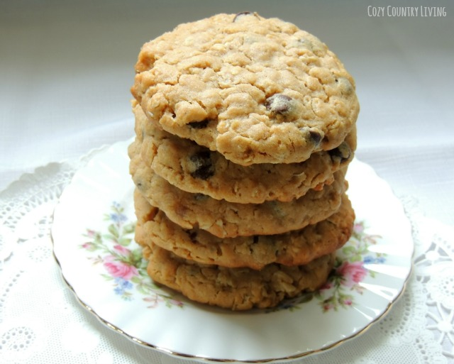 ... Oatmeal Cookies1 Chewy Peanut Butter Chocolate Chip Oatmeal Cookies