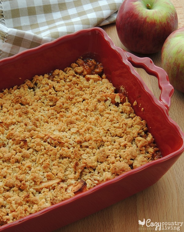Warm Old Fashioned Apple Crisp