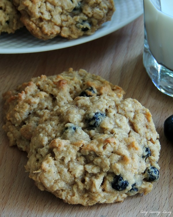 Blueberry Cobbler Oatmeal Cookies, slightly crisp on the outside ...