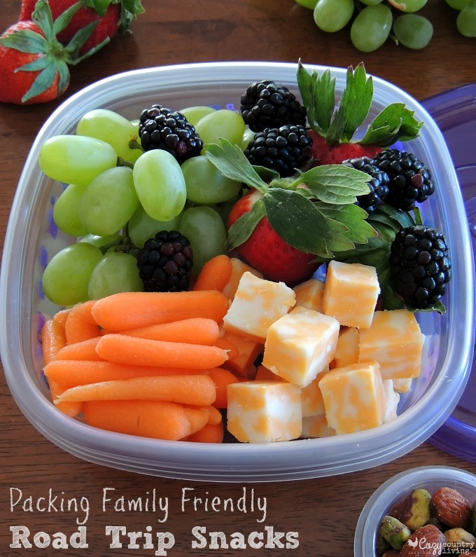 Packing family friendly road trip snacks - Cuisine cosy fly ...
