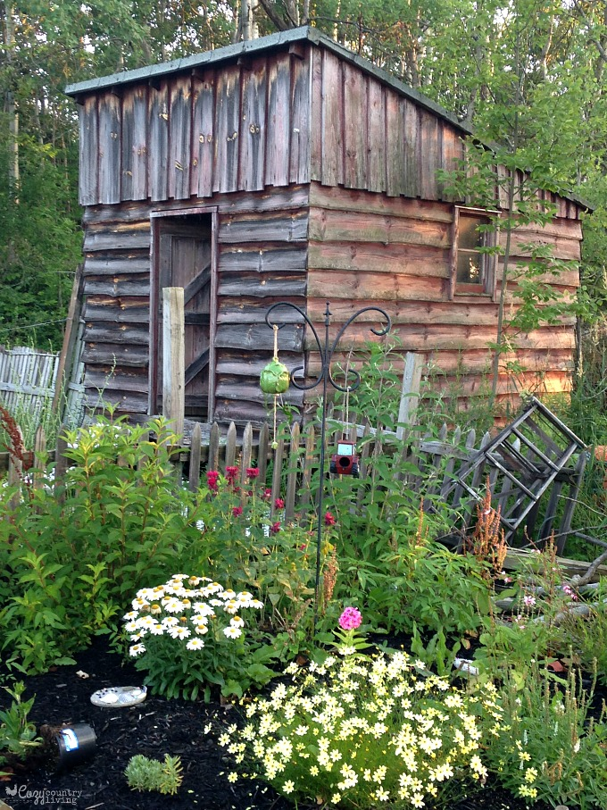 Rustic Garden Sheds Related Keywords Suggestions